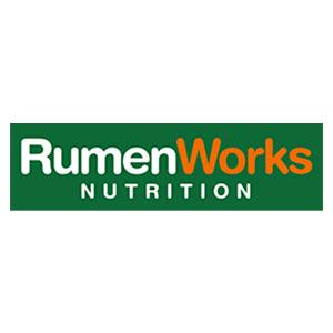 RumenWorks